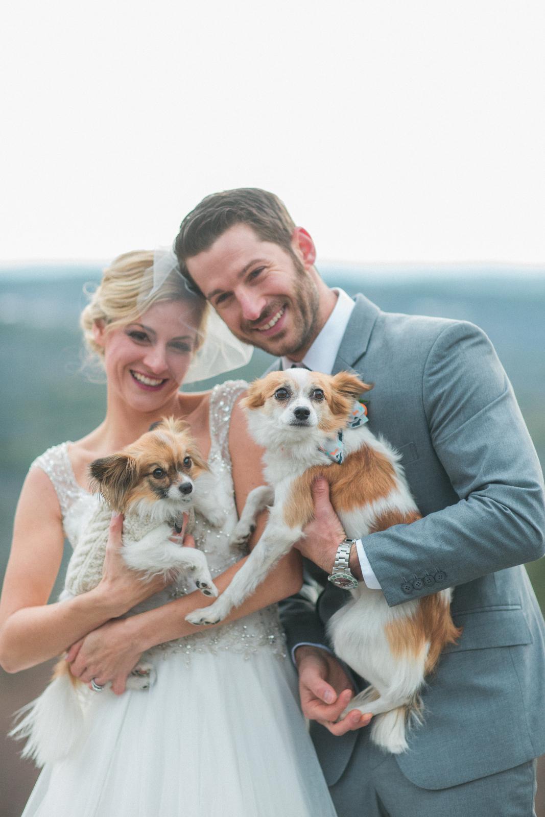 Wedding Dog Photos