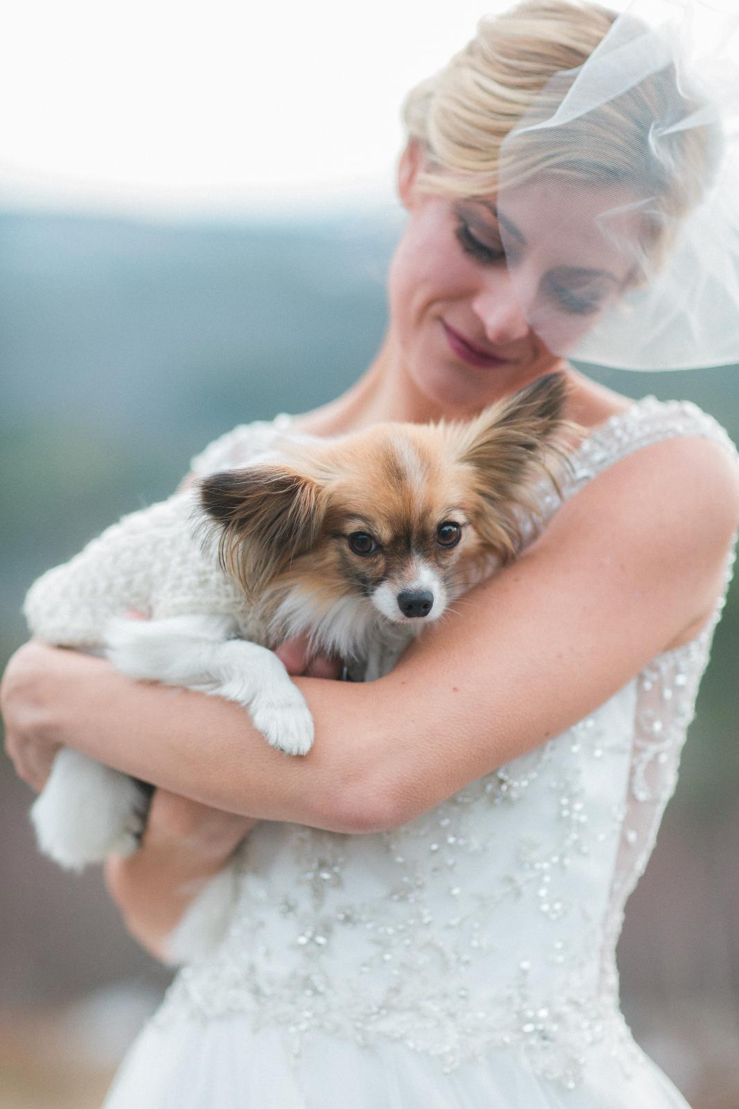 Beautiful Wedding Dog Photo